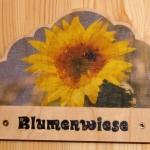 7-0-Blumenwiese